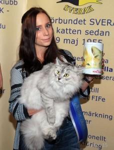 Mr Skara: Sibiriska katten S*Magica De Vil´s Vassi af Alabor. Ägare Sanna Stålberg