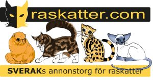 raskatter.com